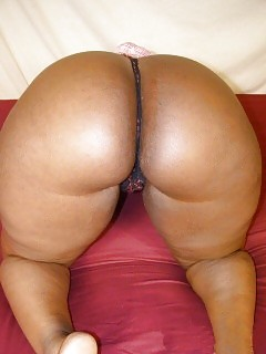 Fatty Black Gfs Sammie Ebony