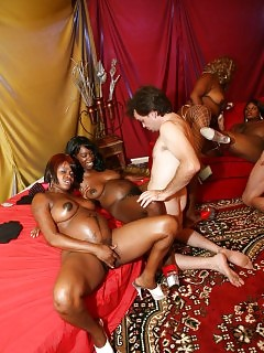 Black Girlfriends Ebony BBW Pics